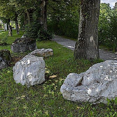 Titelbild für Über Stock und Stein