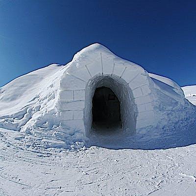 Titelbild für Über Nacht im Schneepalast