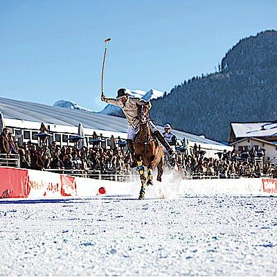 Titelbild für Schneesport auf vier Hufen