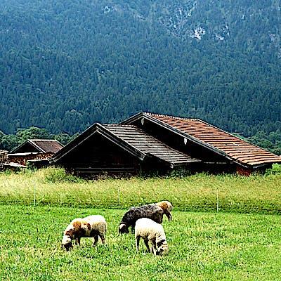 Alpen s3 750p4x0h4
